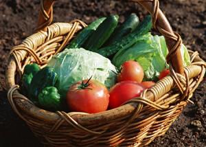野菜&果物に関する消費者ガイド 2016年版
