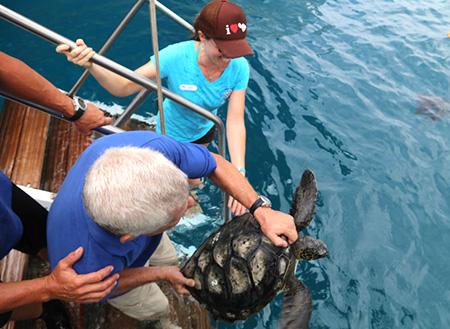 マウイ島の水族館で、海洋研究所が発足