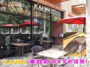 kaiwa;本日のおすすめ☆天然のハワイ産ハプウプウ♪♪