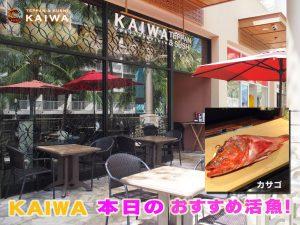 kaiwa;本日のおすすめ☆ハワイ産の新鮮なお魚「HOGO(ホゴ)」