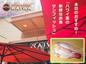 KAIWA-本日(11/8)のおすすめ☆ハワイ島の天然の「Sunfish(サンフィッシュ)」