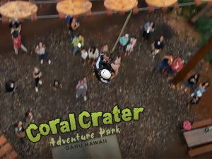 一周年を迎えたコーラルクレーターは、スリル満点のアドベンチャーパーク!