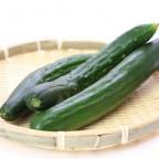夏のお野菜「瓜(うり)」