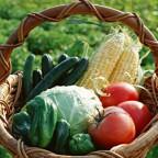 野菜&果物に関する消費者ガイド 2015年版