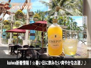KAIWA☆暑い日に飲みたい爽やかなお酒♪♪