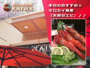 KAIWA本日のおすすめ☆モロカイ島産『天然甘エビ』♪♪