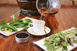 マウイ島ハレアカラ山麓の希少な紅茶