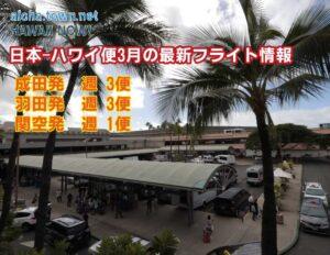 【日本-ハワイ 3月のフライト情報】